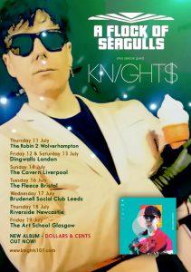 KNIGHT$ Seagulls